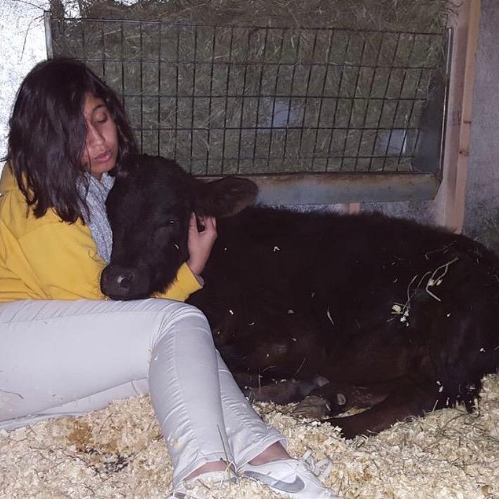 Alina and Ferdinand